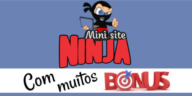 Black Friday Mini Site Ninja